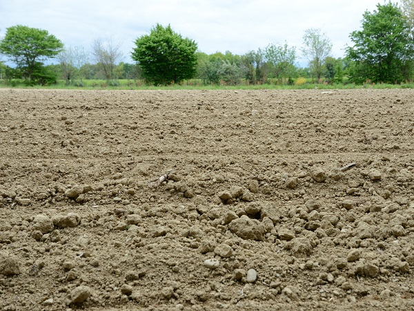Ploughed soil of the spring field